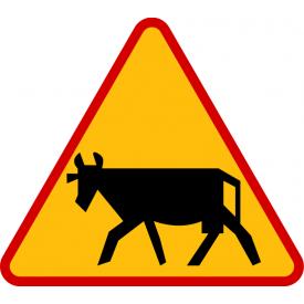 A-18a Zwierzęta gospodarskie - znak drogowy ostrzegawczy