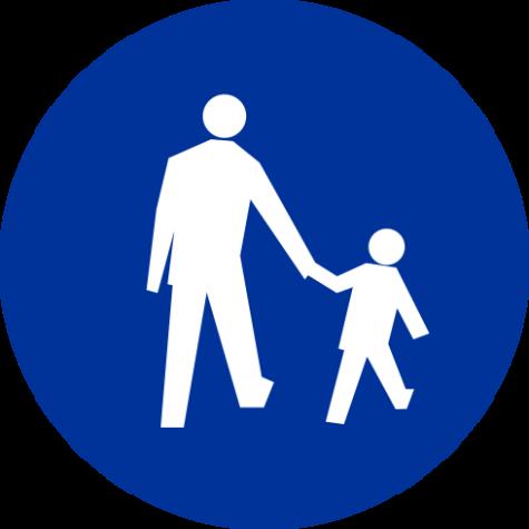 C-16 Droga dla pieszych - znak drogowy nakazu
