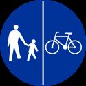 C-13/16 Znak wskazujący ruch pieszych lewą stroną drogi i ruch rowerów prawą stroną drogi - znak drogowy nakazu