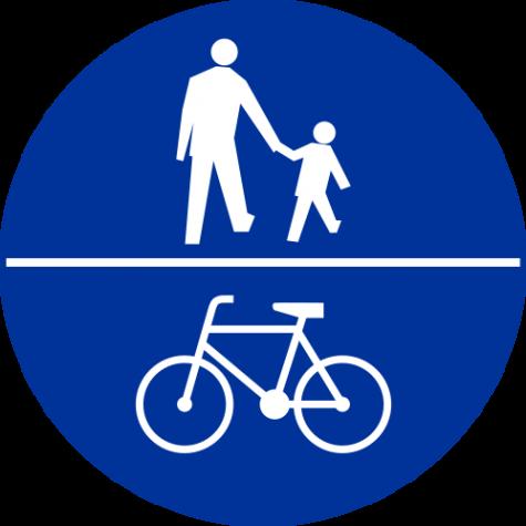 C-13/16 Znak wskazujący ruch pieszych i rowerów na tej samej drodze - znak drogowy nakazu